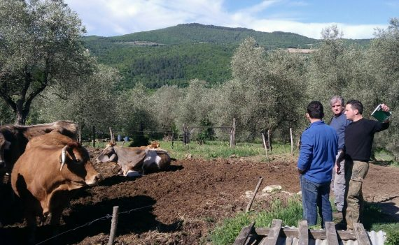 Remind di maggio con sorpresa… Roberto Nocentini alla Valle del Sasso!