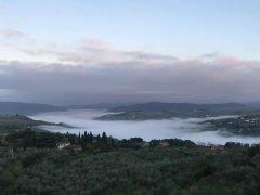 La nebbia a gl'irti colli piovigginando sale… reminder di novembre: prima delle luci natalizie, l'autunno merita un'altra vendita diretta!