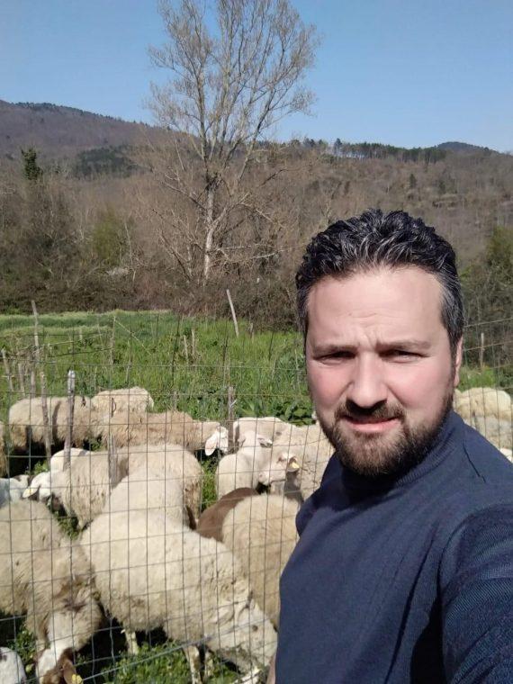 Reminder di fine maggio… pecora, manzo e maiale in vendita diretta!
